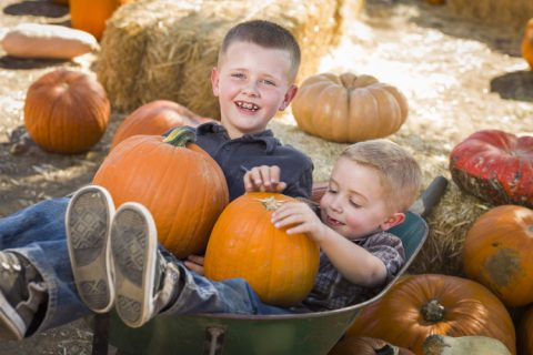 Tetínské farmářské trhy – Halloween 2021, termín upřesníme